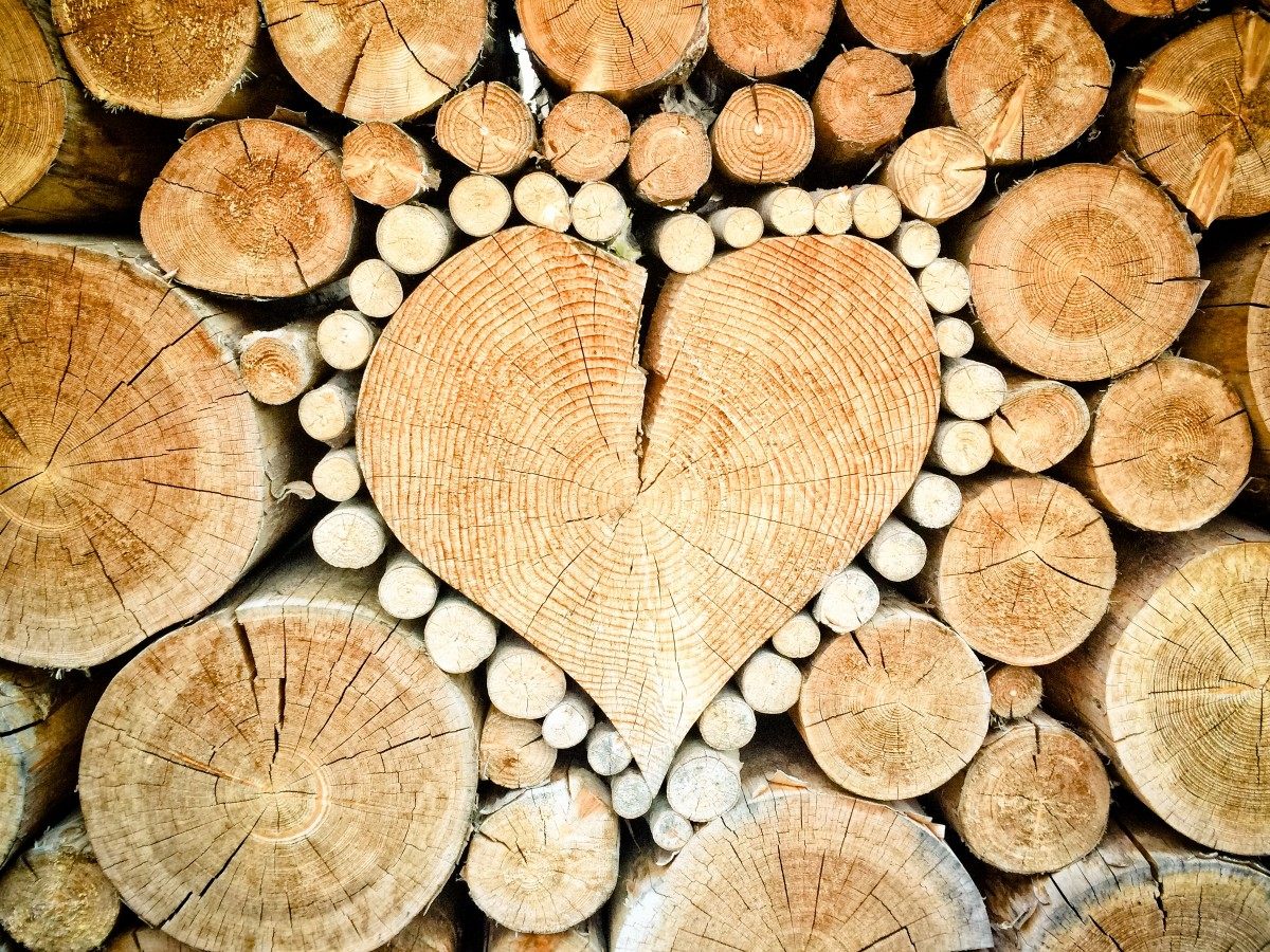 heart wood logs combs thread cutting wood pile stacked firewood decoration 639818